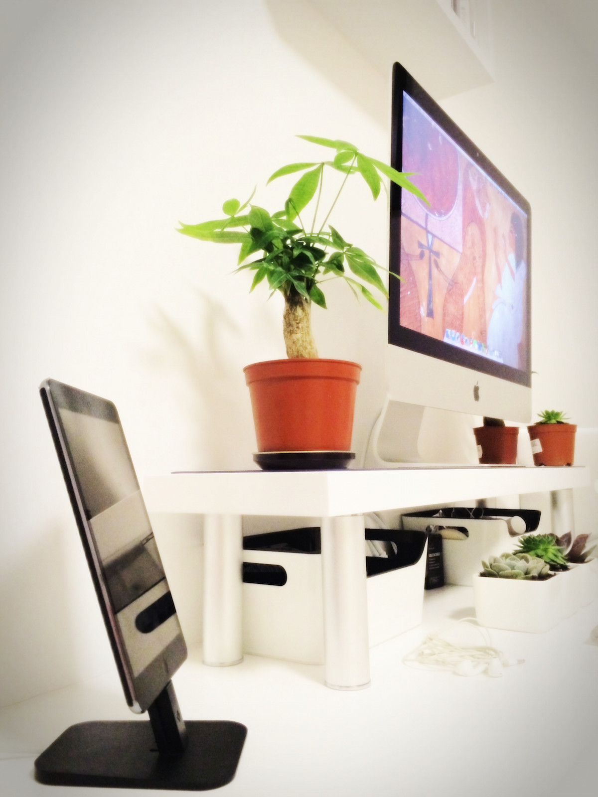 Imac 21 5 Inch Ipad Mini With Retina Display Ipad2 Macbook Air Twelve South Bookarc Hirise Little Plants